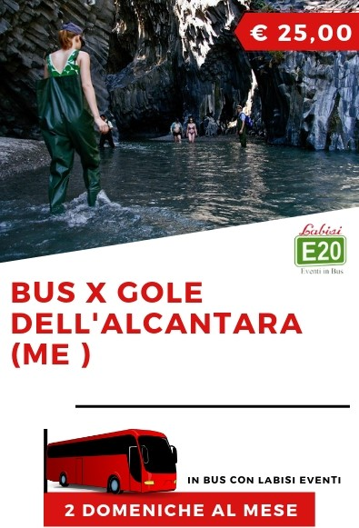 BUS X GOLE DELL